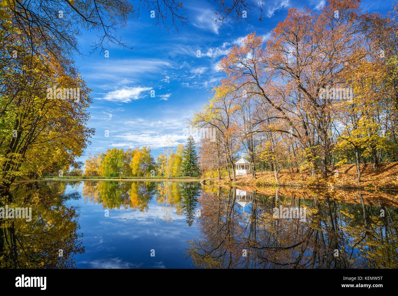 Sunny Autunno nel parco sul lago Immagini Stock