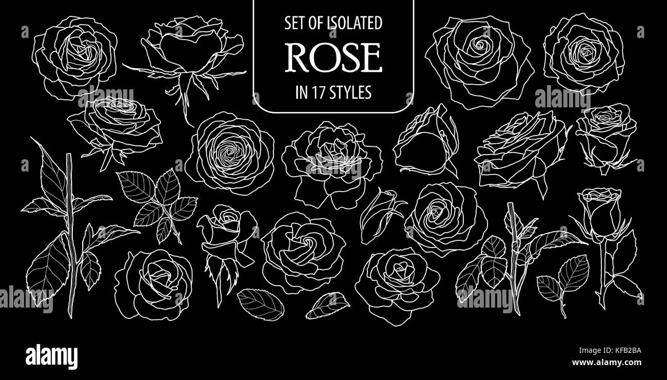 Set Di Rose Isolati In 17 Stili Carino Disegnato A Mano Fiore