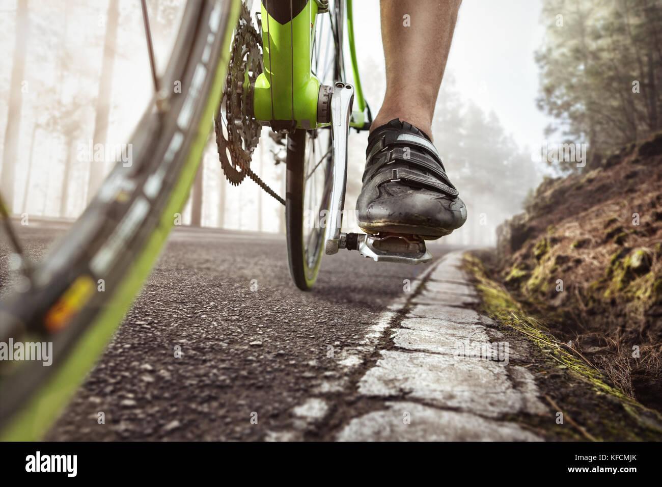Escursioni in bicicletta in una nebbiosa strada forestale Immagini Stock
