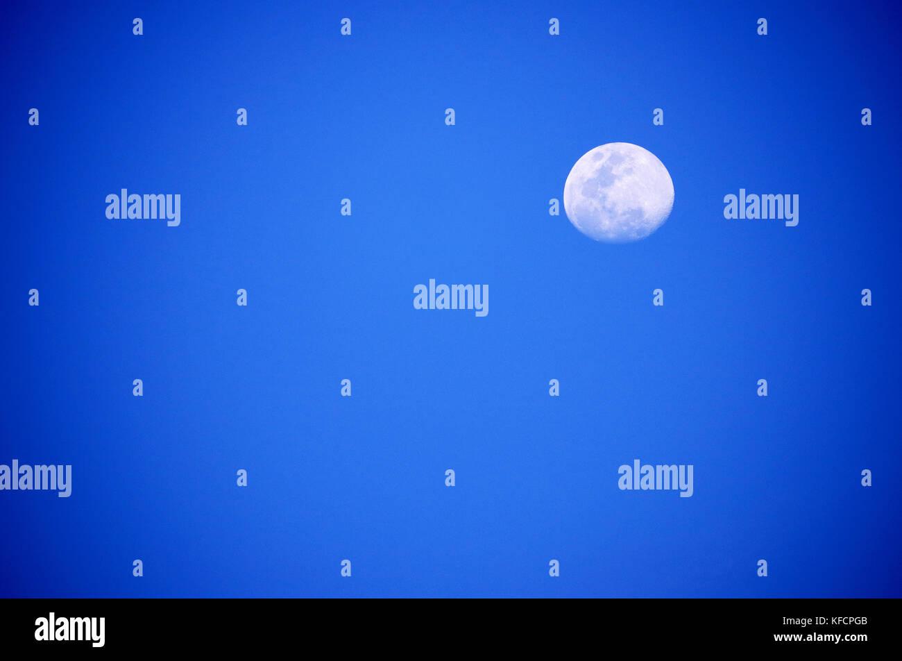 Luna llena desde puerto rico Immagini Stock