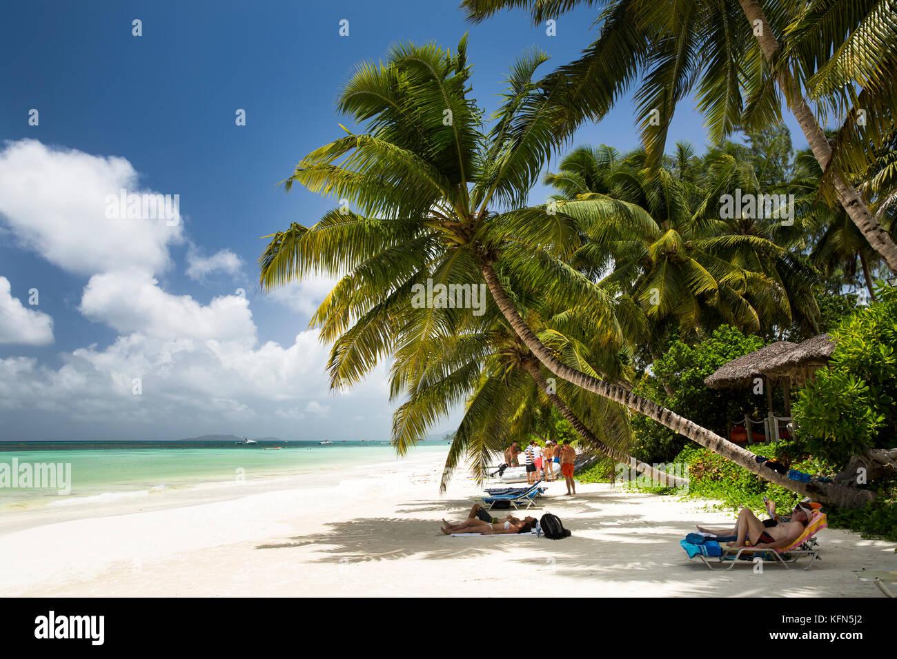 Delle Seychelles, Praslin, Anse Volbert, spiaggia, i turisti a prendere il sole in ombra delle palme Immagini Stock