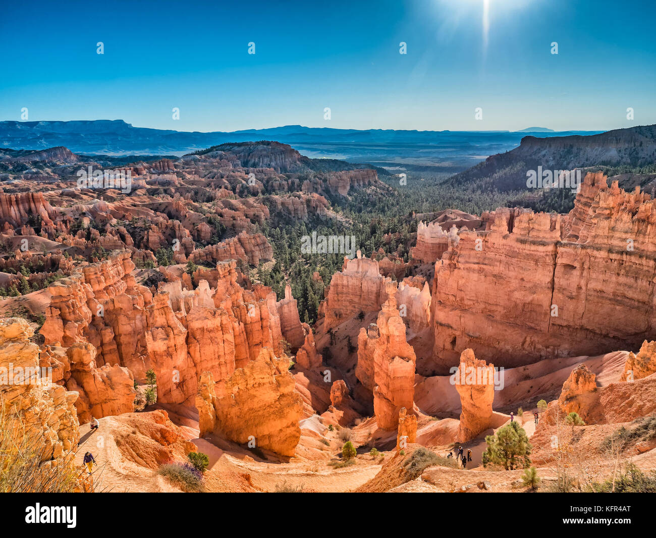 Bryce Canyon giù per Wall Street in Utah, USA Immagini Stock