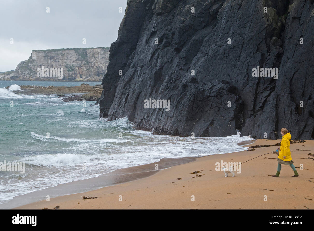 Donna con cane in spiaggia, Ballintoy, Co. Antrim, Irlanda del Nord Immagini Stock