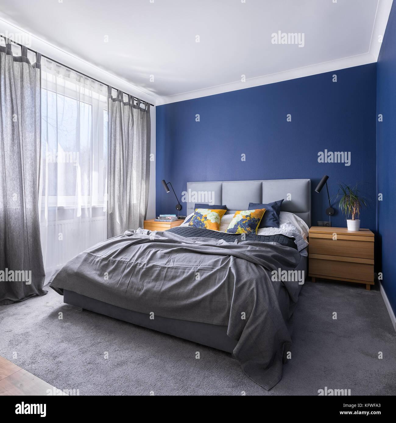 Moderno Blu Cobalto Camera Da Letto Con Letto Doppio Letto Grigio Moquette E Finestra Foto Stock Alamy