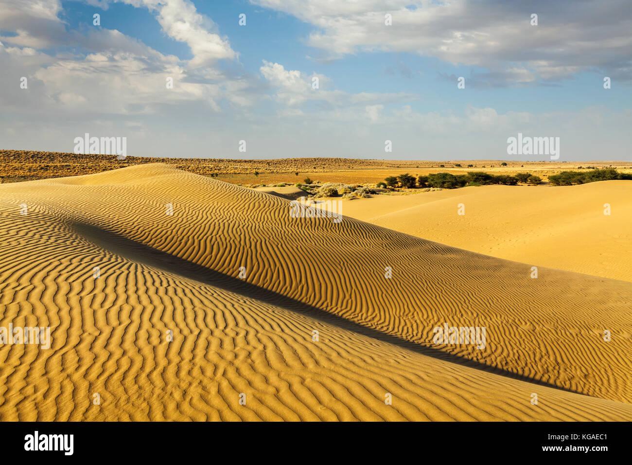 Dune del deserto di Thar, Rajasthan, India Immagini Stock