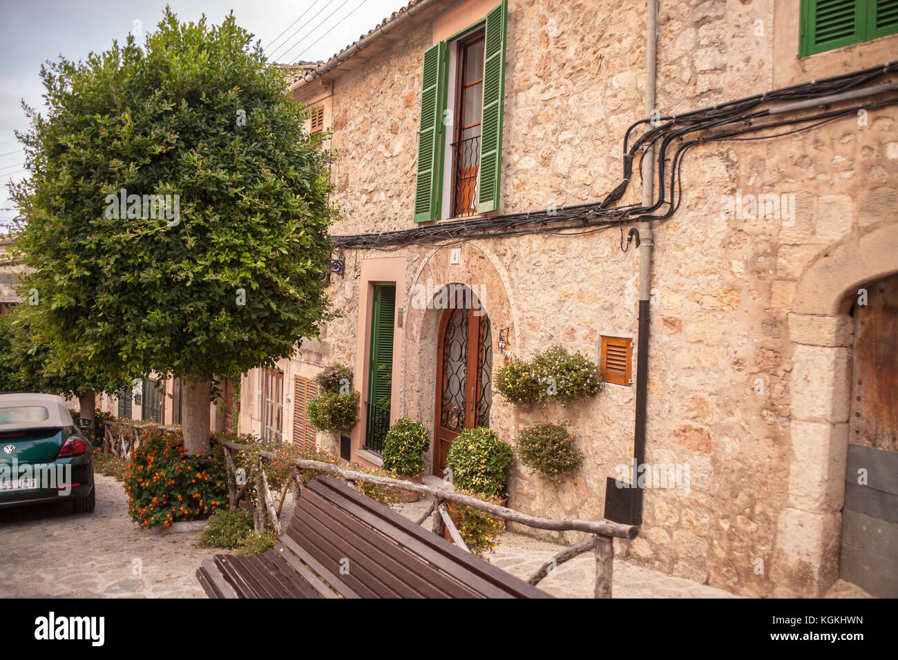 Grande albero accanto al townhouse sulla strada di Valldemossa, Mallorca Foto Stock