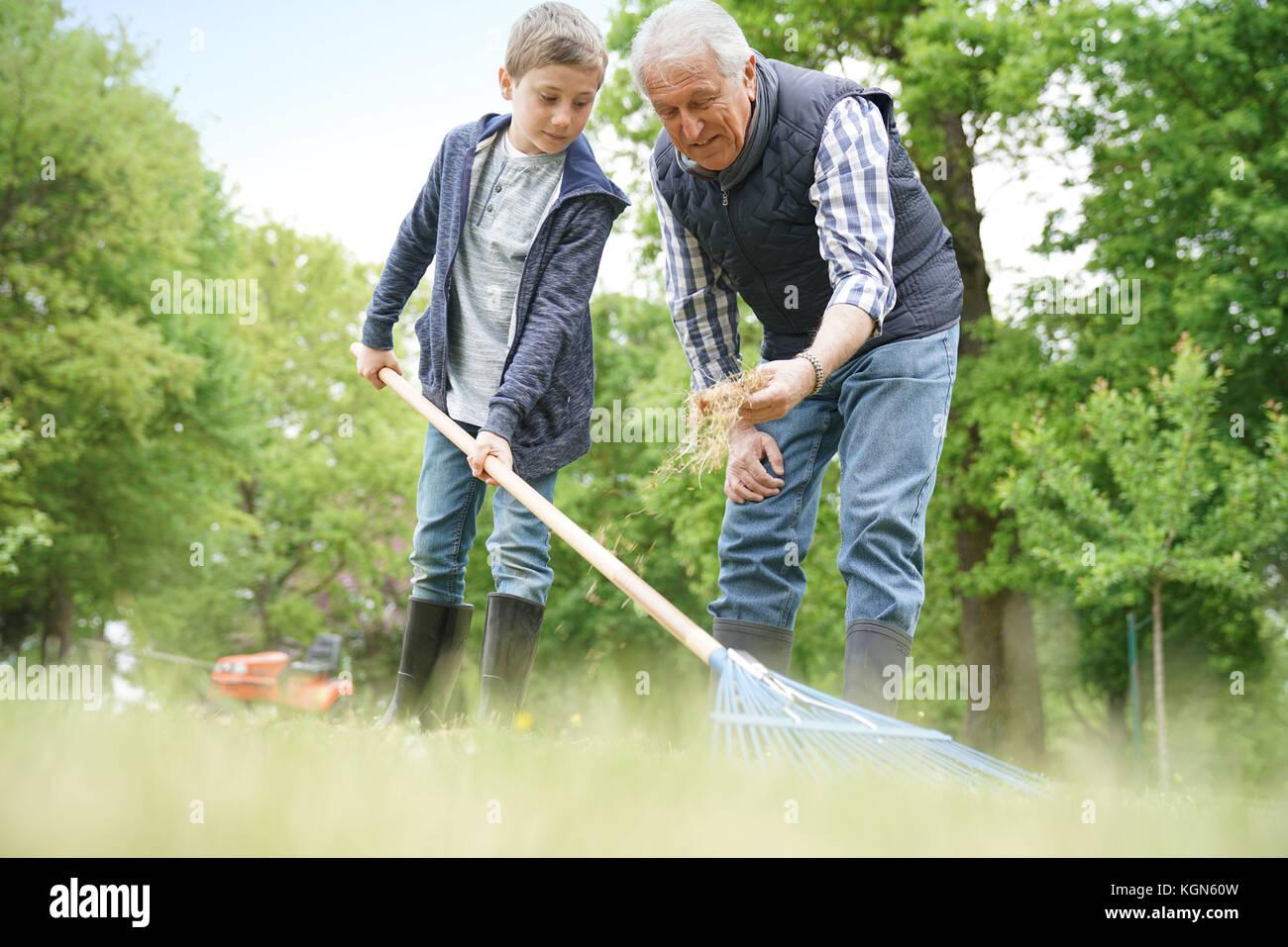 Nonno con pulizia grandkid giardino con rastrello Immagini Stock