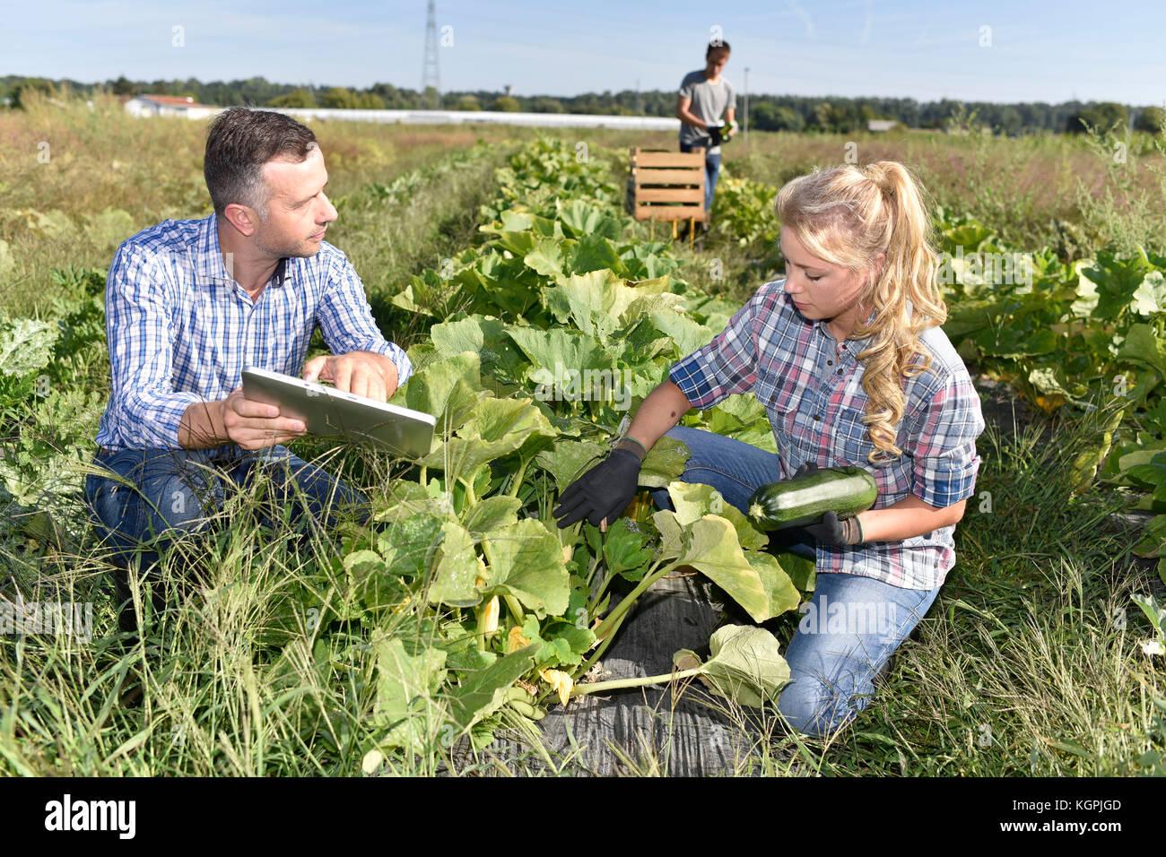 Giovani con istruttore in campo agricolo Immagini Stock