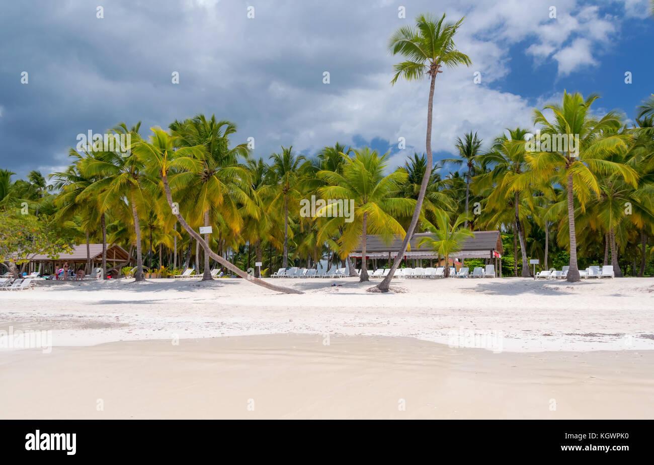 Spiaggia dell'isola caraibica di saona nella repubblica dominicana. Immagini Stock