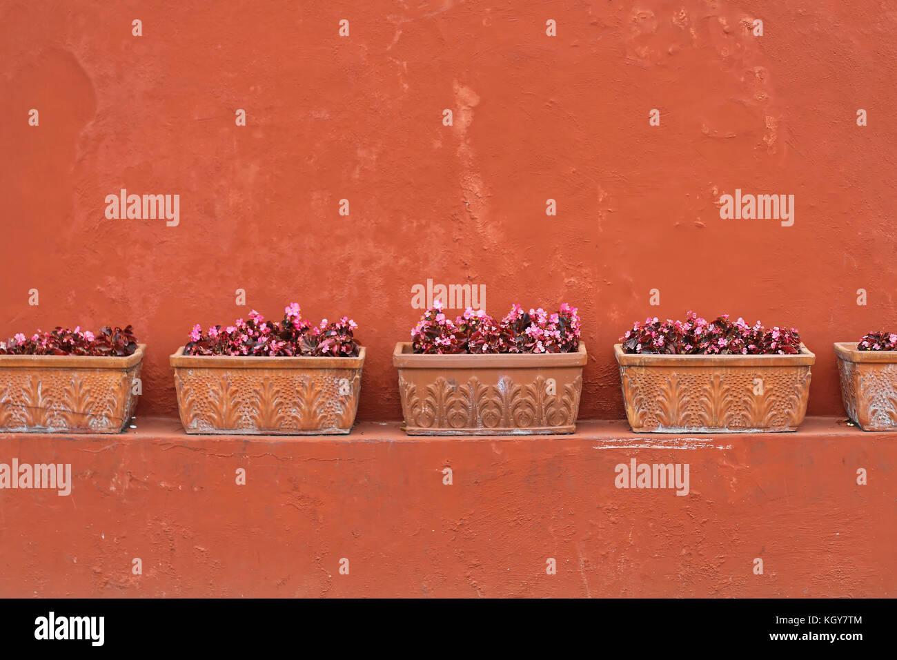 Rectangular Pots Immagini Rectangular Pots Fotos Stock Alamy
