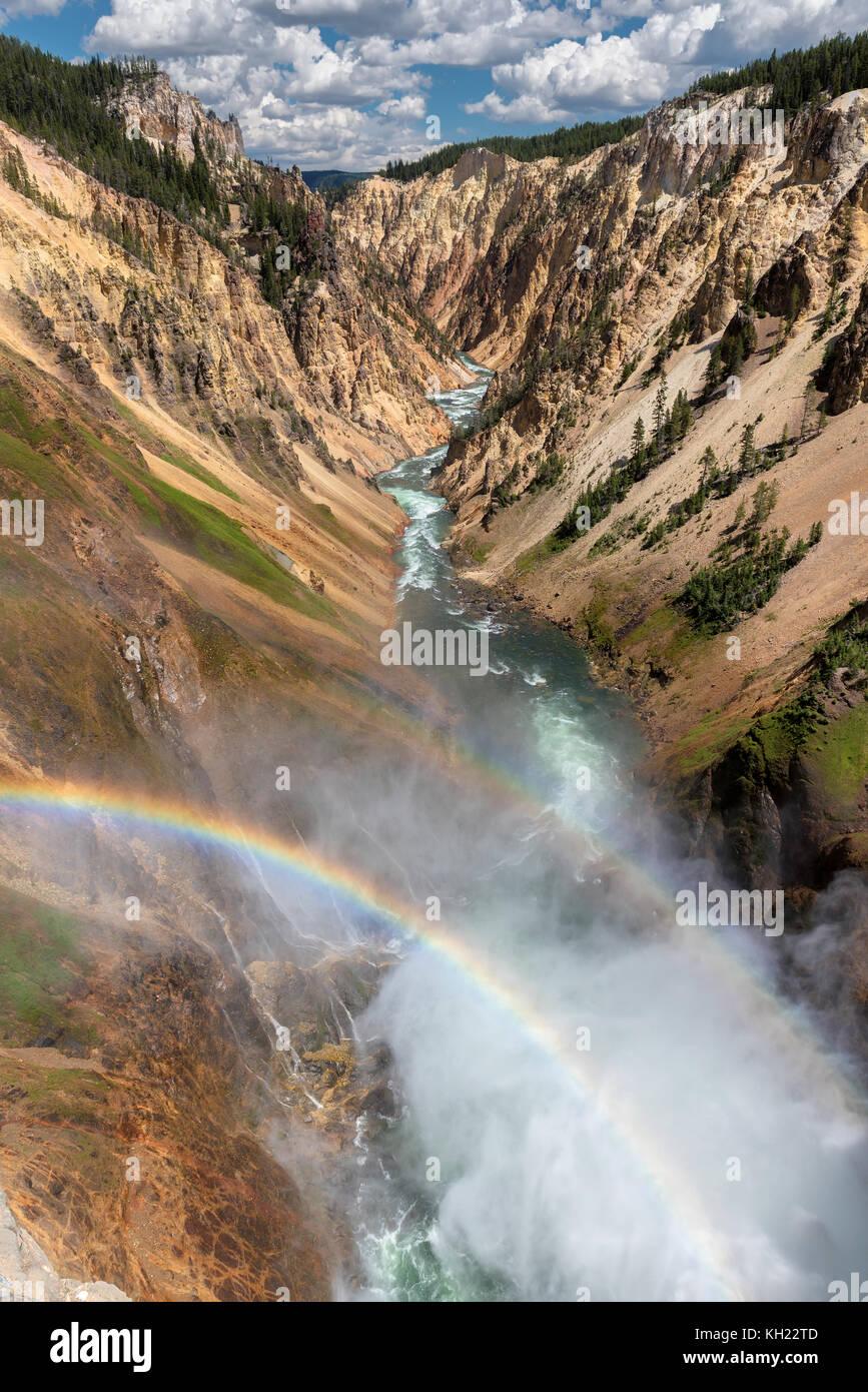 Il grand canyon del Parco Nazionale di Yellowstone Immagini Stock