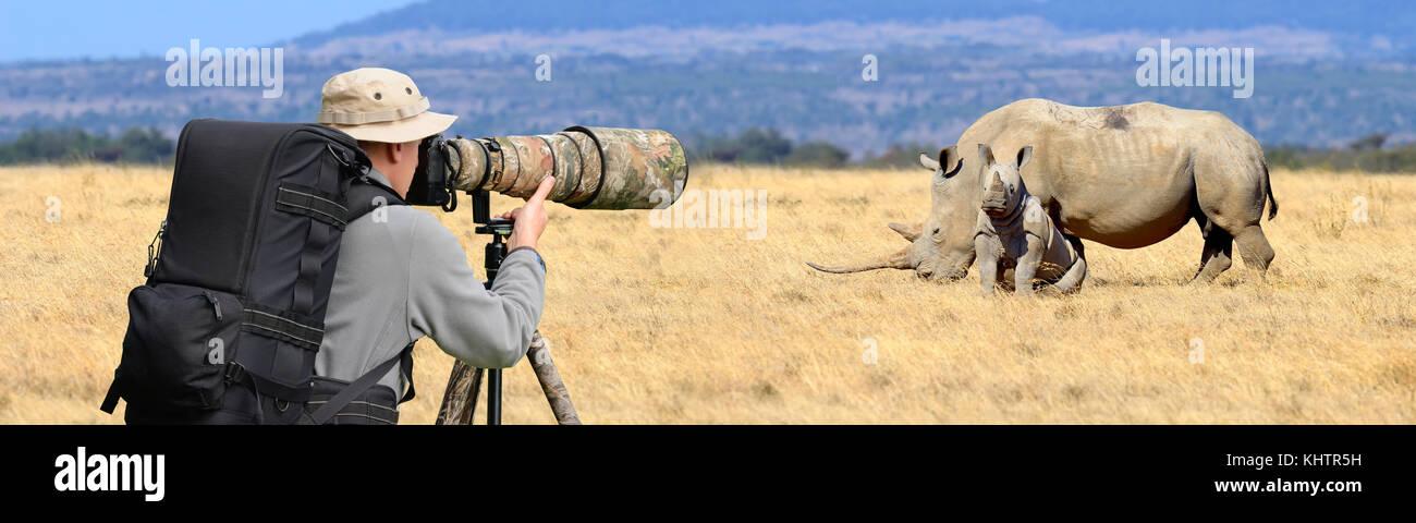 Professional Wildlife Photographer on safari. rhino shot Immagini Stock