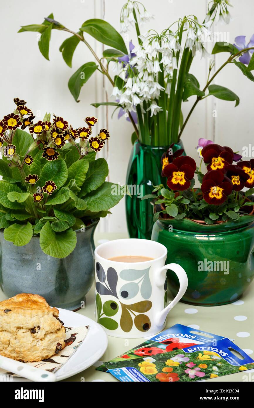 Il tè del pomeriggio con scones in una soleggiata primavera home Immagini Stock