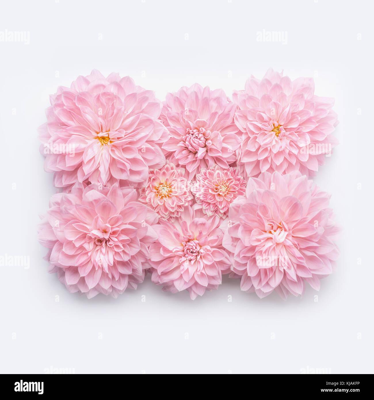 Auguri Per Un Matrimonio Immagini : Creative rosa pastello fiori laici piana vista superiore