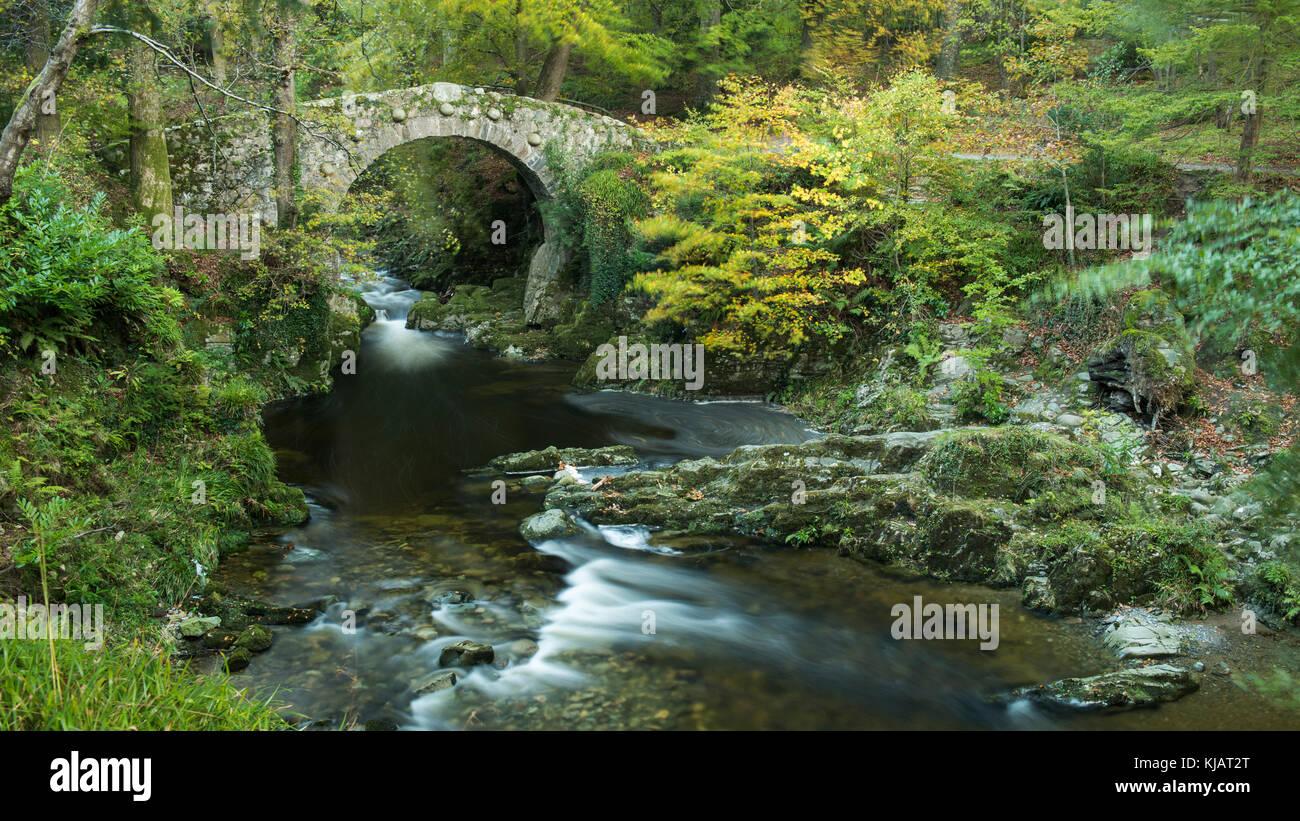 Foley's bridge, foresta di tollymore Foto Stock