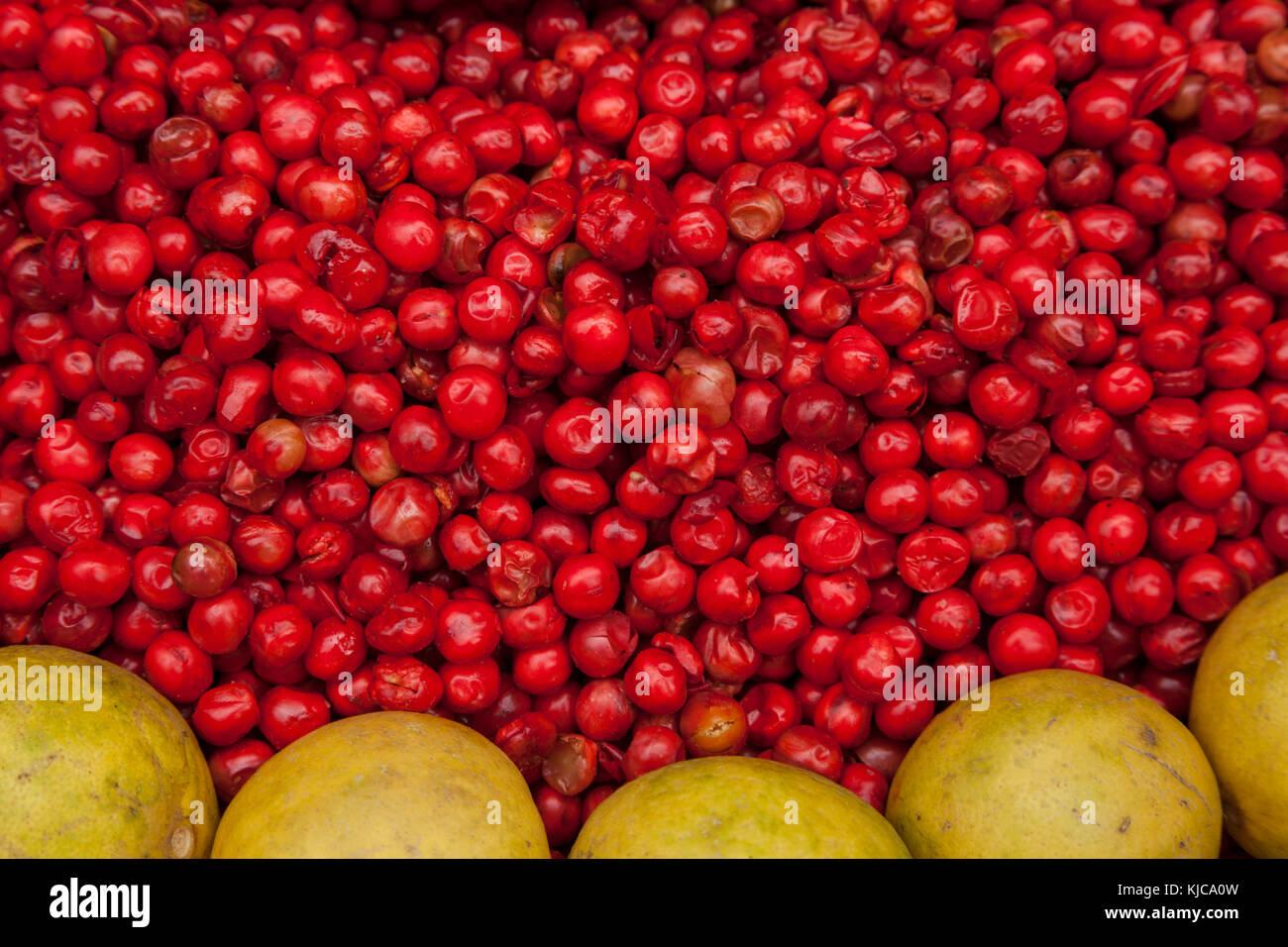 Pompelmo e bacche rosse nel mercato charminar, Hyderabad, India. Immagini Stock