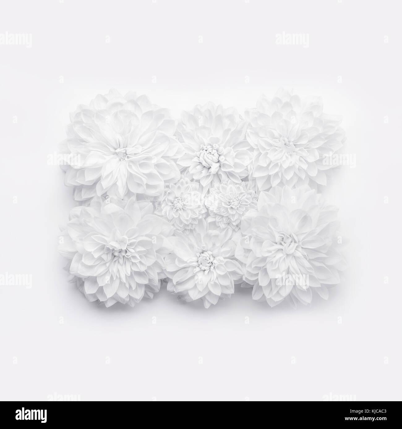 Auguri Per Un Matrimonio Felice : Creative fiori bianchi layout disegno floreale o lo sfondo per