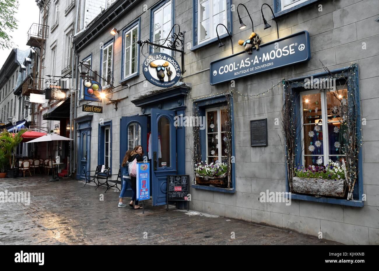 Fresco come un alce boutique è il più cool piccolo negozio. Immagini Stock