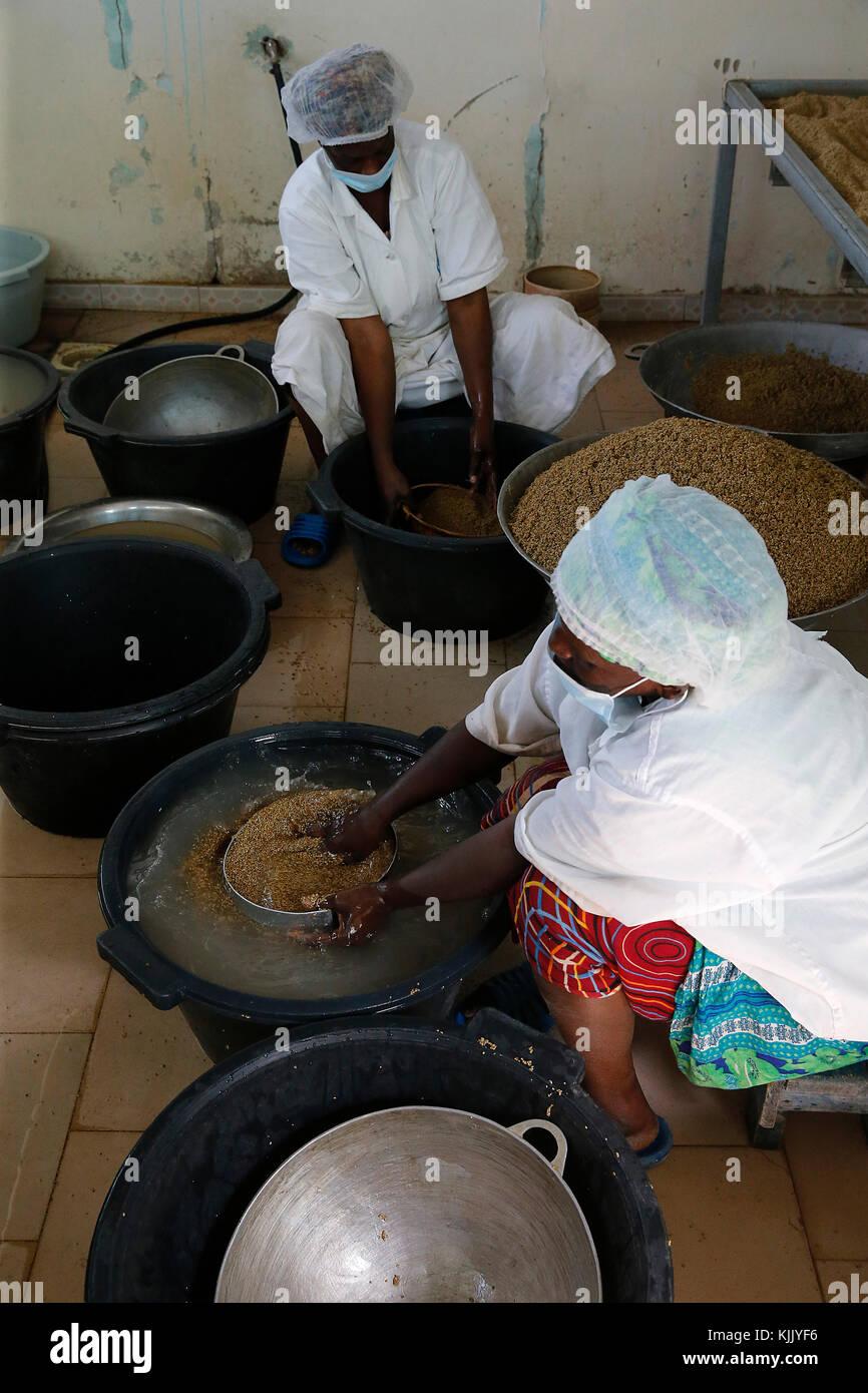 La caseificio du Berger (i pastori' dairy) social business. Caseificio fabbrica. Il Senegal. Immagini Stock