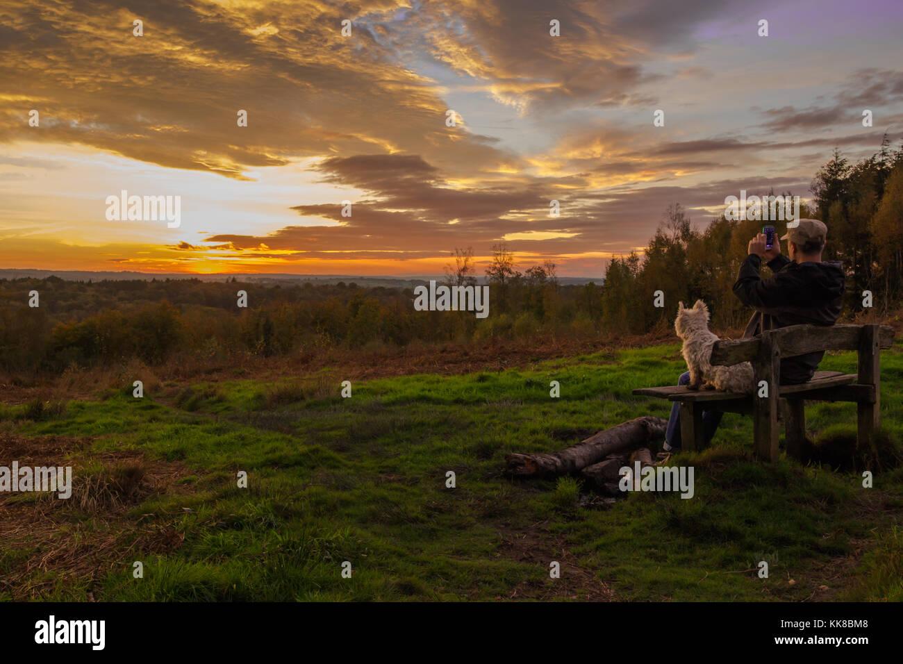 Tunbridge wells hargate forest kent; l'uomo con il cappello sulla seduta sul banco di lavoro con westie cane Immagini Stock