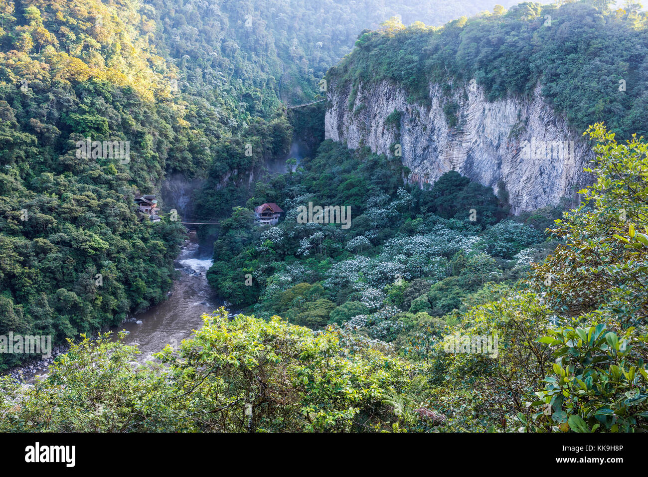 La foresta pluviale di montagna, vicino alla cascata pailon del Diablo nelle Ande. banos. Ecuador Immagini Stock