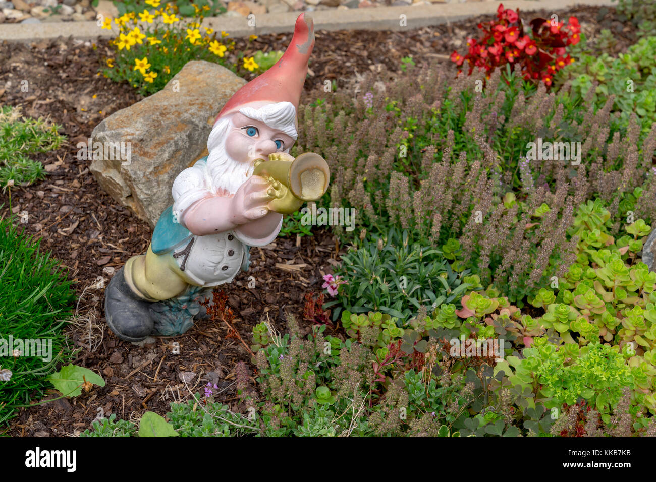 Alberi Nani Da Giardino garden dwarfs immagini & garden dwarfs fotos stock - alamy