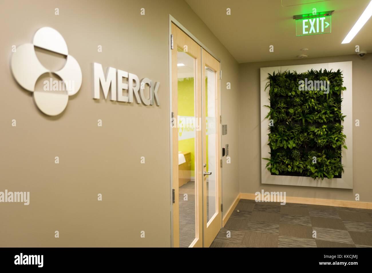 Parete Verde Ufficio : Vista dellingresso alla mission bay ufficio della società