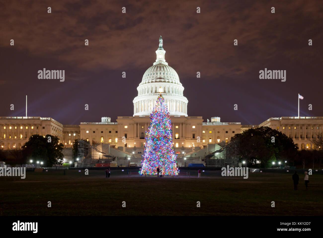 Immagini Natale Usa.Albero Di Natale A Washington Dc Stati Uniti Usa Foto Immagine