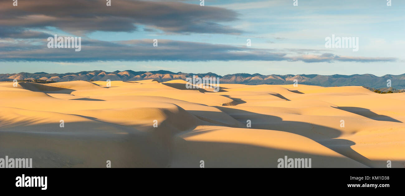 Foto panoramica di Oceano Dunes State Vehicular Recreation Area, Oceano dune naturali preservare, California, Stati Immagini Stock
