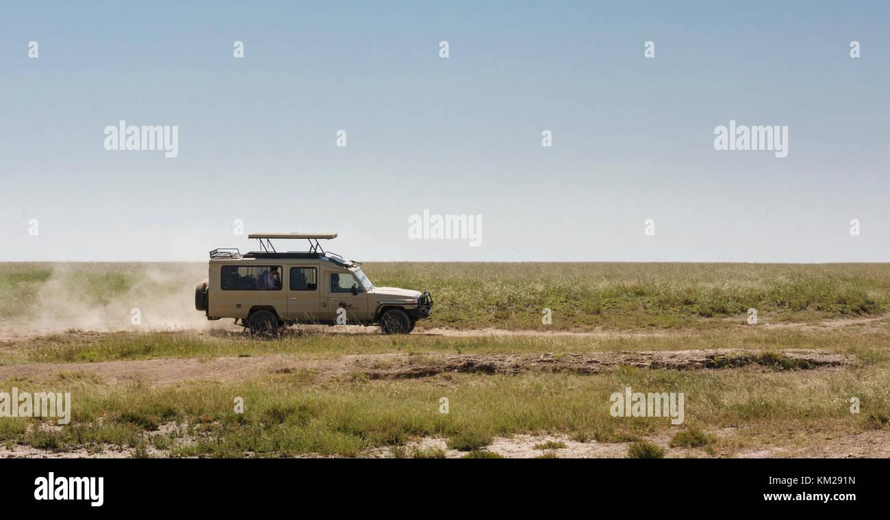 Jeep safari nel Serengeti, Tanzania Africa Immagini Stock