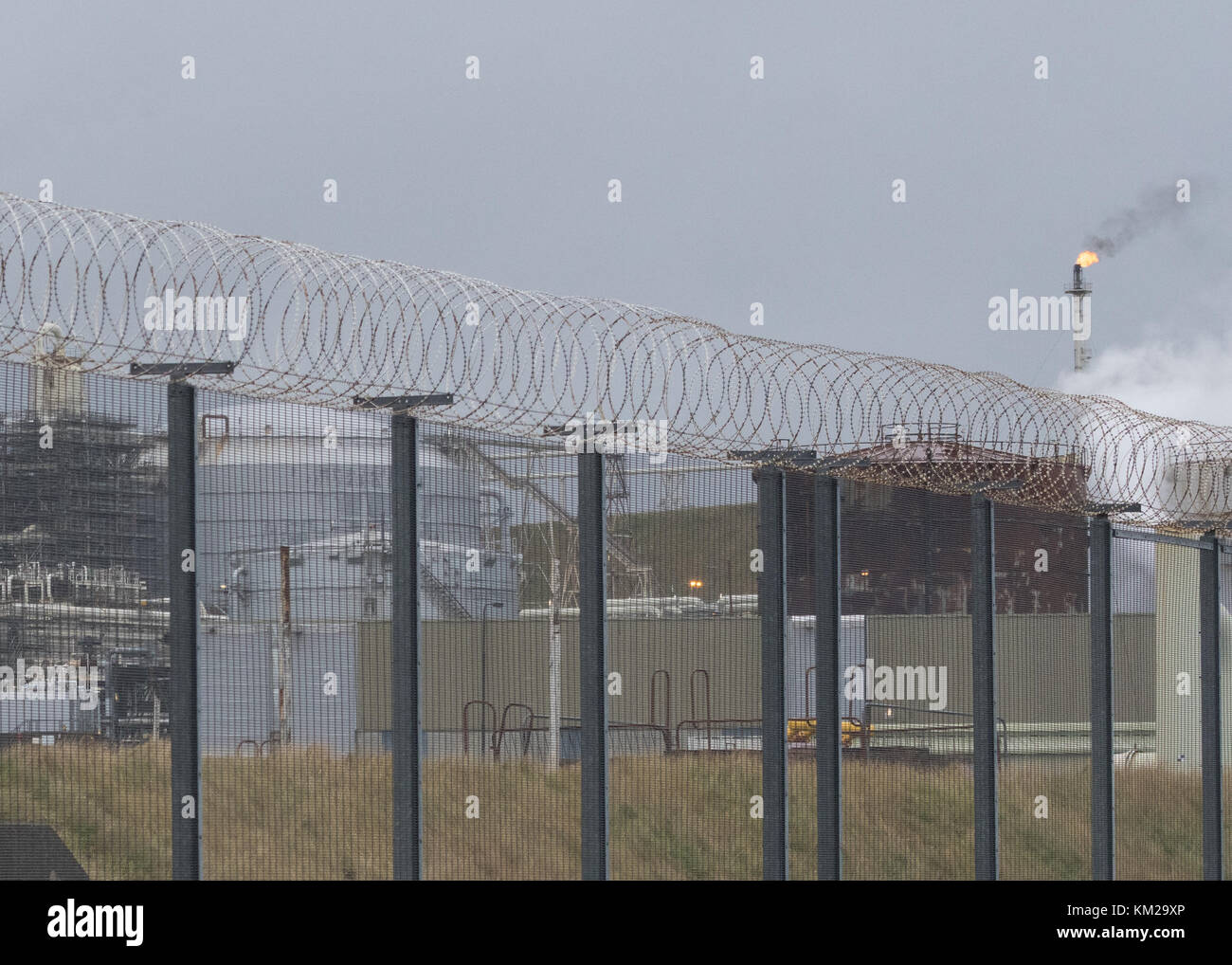 Filo di rasoio la recinzione di sicurezza a Sullom Voe terminale petrolifero, isole Shetland, Scotland, Regno Unito Immagini Stock