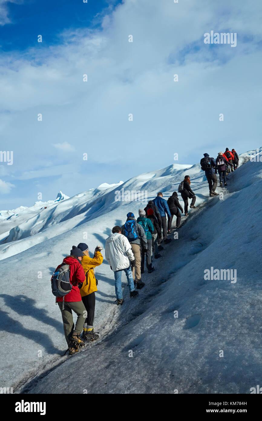 Gli escursionisti sul ghiacciaio Perito Moreno, Parque Nacional Los Glaciares (area del patrimonio mondiale), Patagonia, Argentina, Sud America Foto Stock