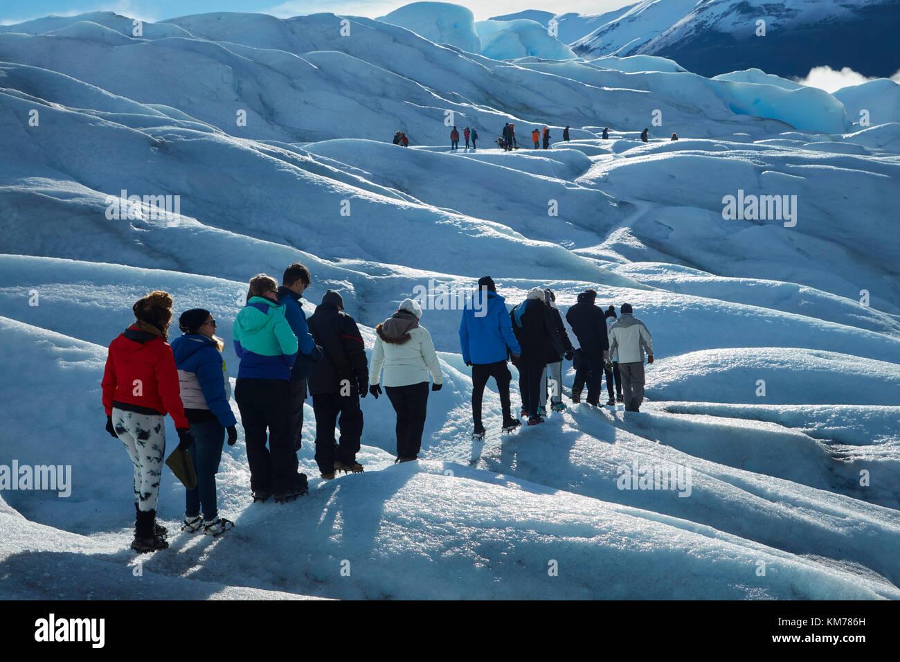 Gli escursionisti sul ghiacciaio Perito Moreno, Parque Nacional Los Glaciares (area del patrimonio mondiale), Patagonia, Foto Stock