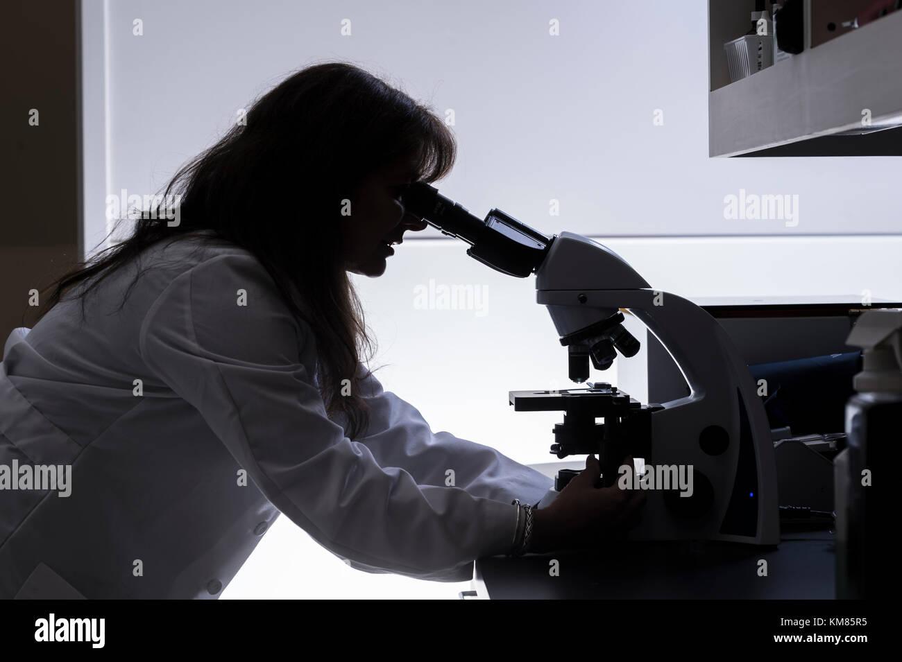 Donna scienziato stagliano usando microscopio Foto Stock