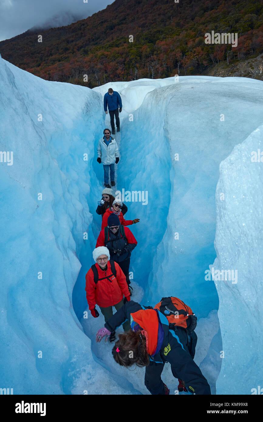 Gli escursionisti in crepaccio, ghiacciaio Perito Moreno, Parque Nacional Los Glaciares (area del patrimonio mondiale), Immagini Stock