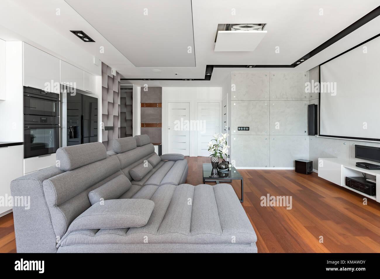 Soggiorno moderno con schermo proiettore, divano letto e angolo ...