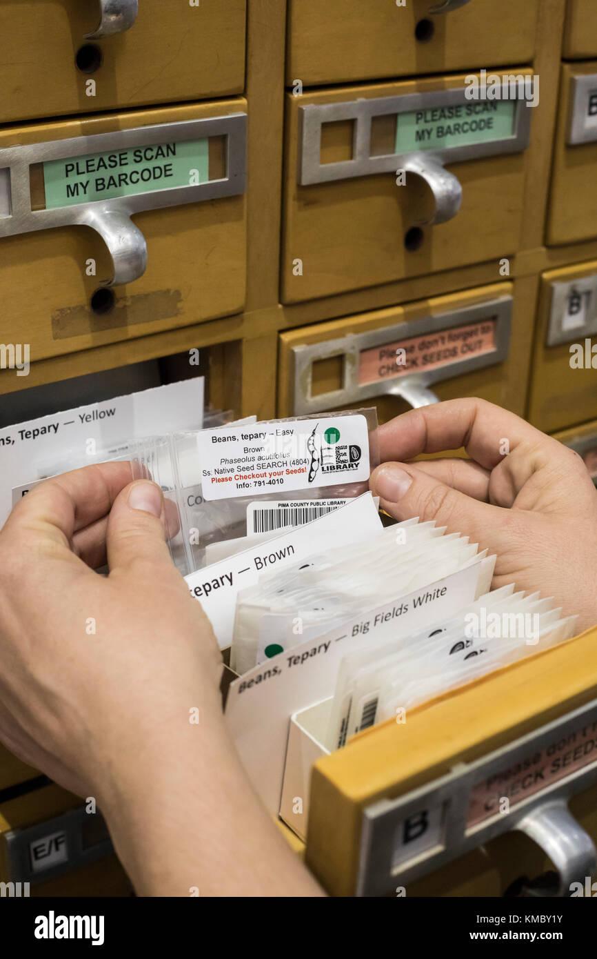 Tucson, Arizona - pima county public library mantiene una collezione di semi in un vecchio catalogo scheda file. Immagini Stock