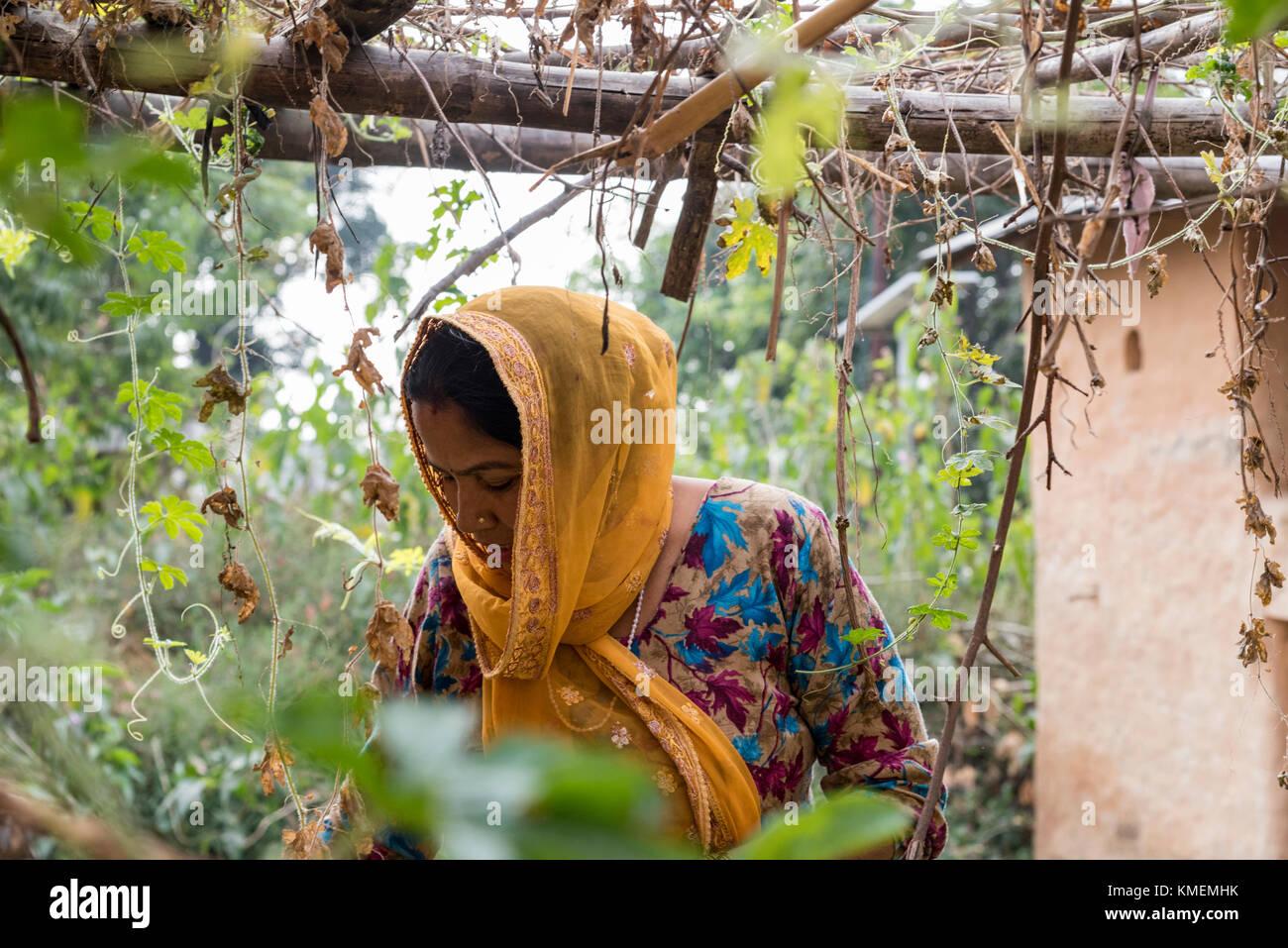 Una donna indiana in piedi in un giardino circondato da piante. Immagini Stock