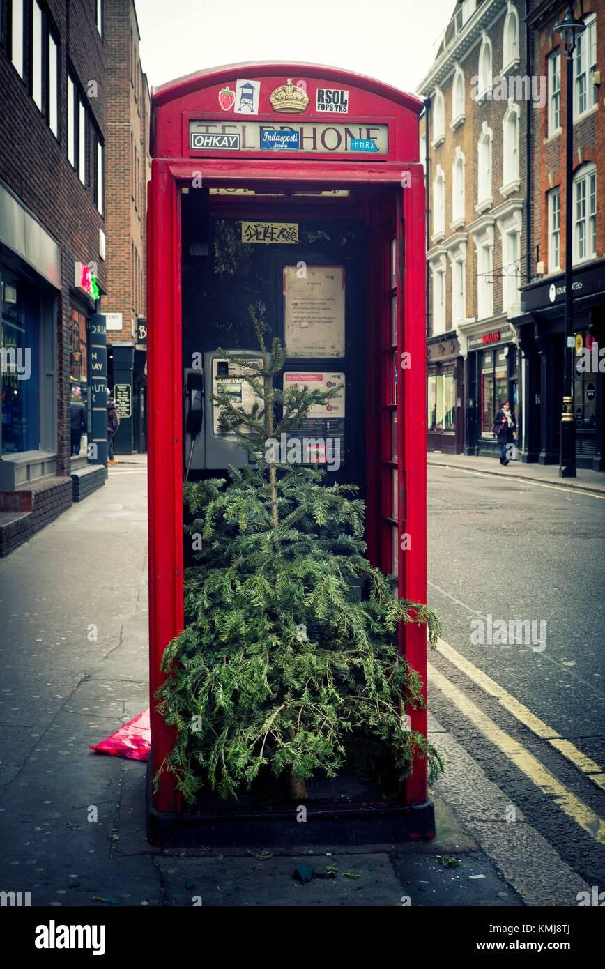Il Primer plano de una cabina telefónica roja con onu árbol de Navidad dentro. Soho, Ciudad de Westminster, Immagini Stock