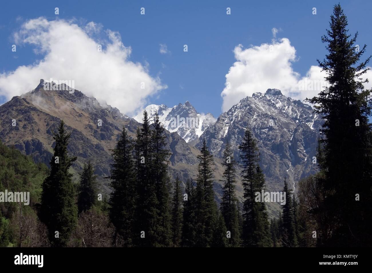 Ala Archa Canyon, Boks picco, Kyrgystan Immagini Stock