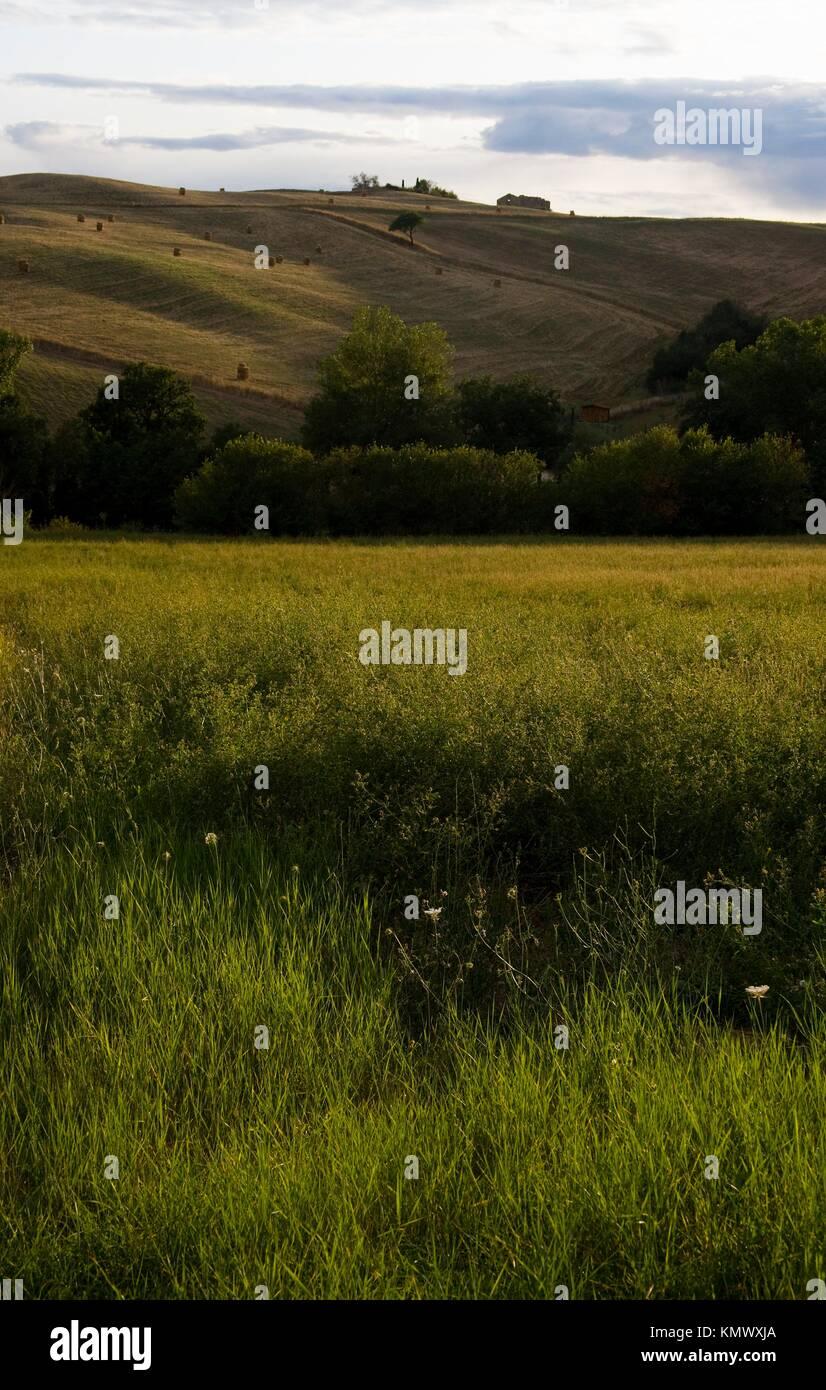 https://c8.alamy.com/compit/kmwxja/paesaggio-toscano-in-val-dorcia-intorno-a-san-casciano-dei-bagni-a-sud-di-siena-toscana-italia-kmwxja.jpg