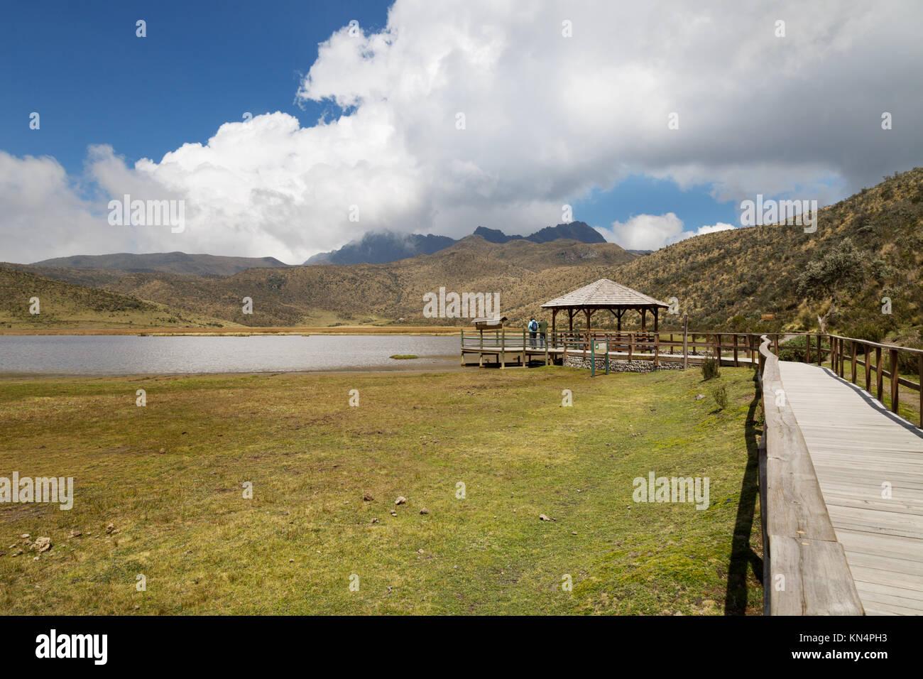 I turisti in un belvedere, Lago Limpiopungo, Parco Nazionale Cotopaxi, Ecuador, Sud America Immagini Stock