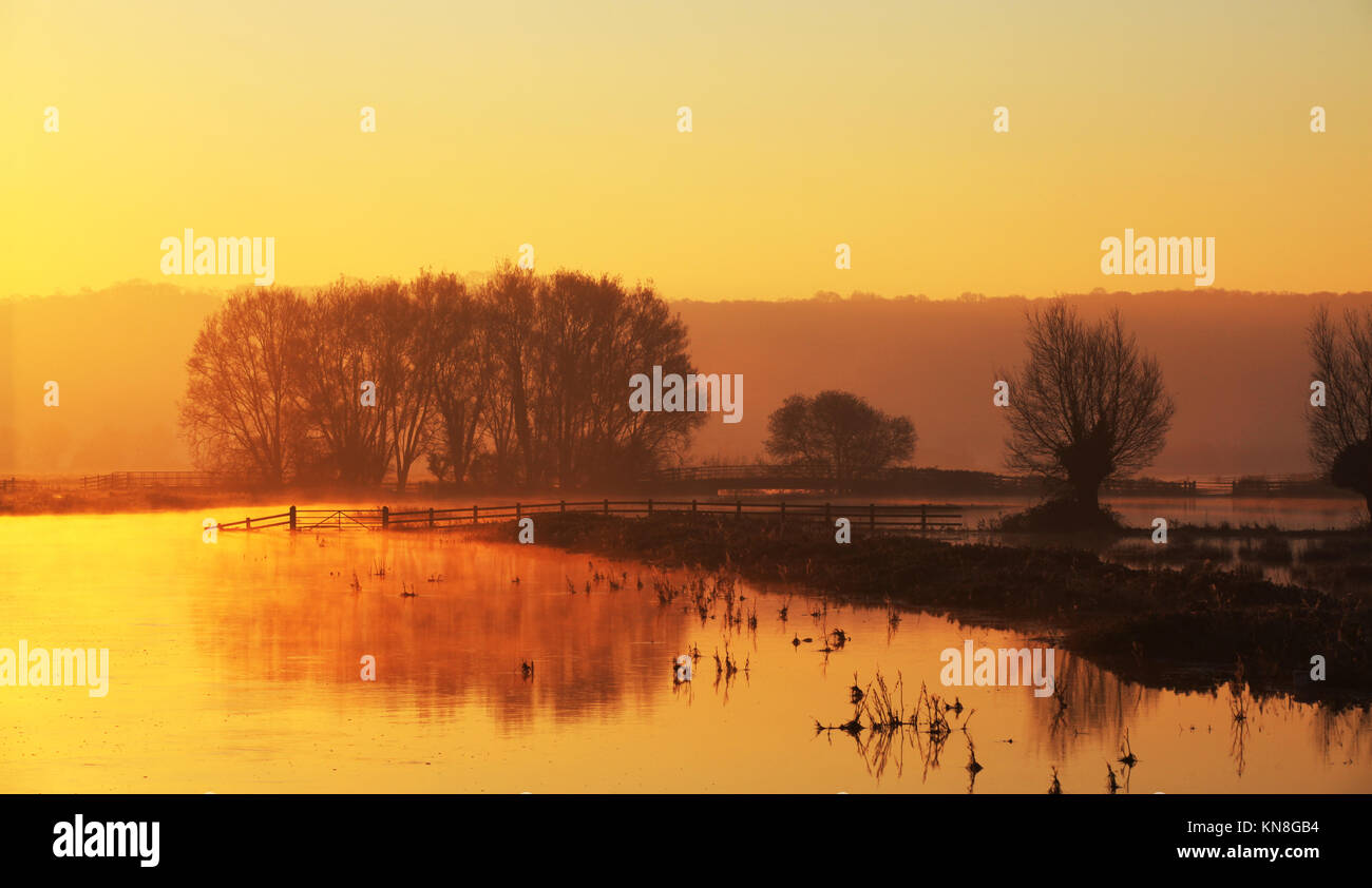 Campo allagato in somerset di sunrise Immagini Stock