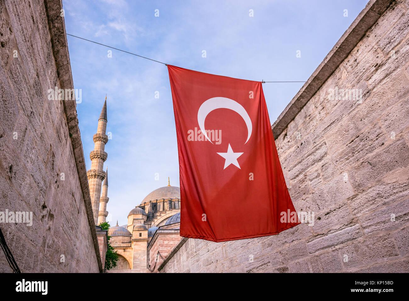 Vista esterna della Moschea Suleymaniye,decorate con elementi islamici e progettato dall' architetto ottomano Immagini Stock