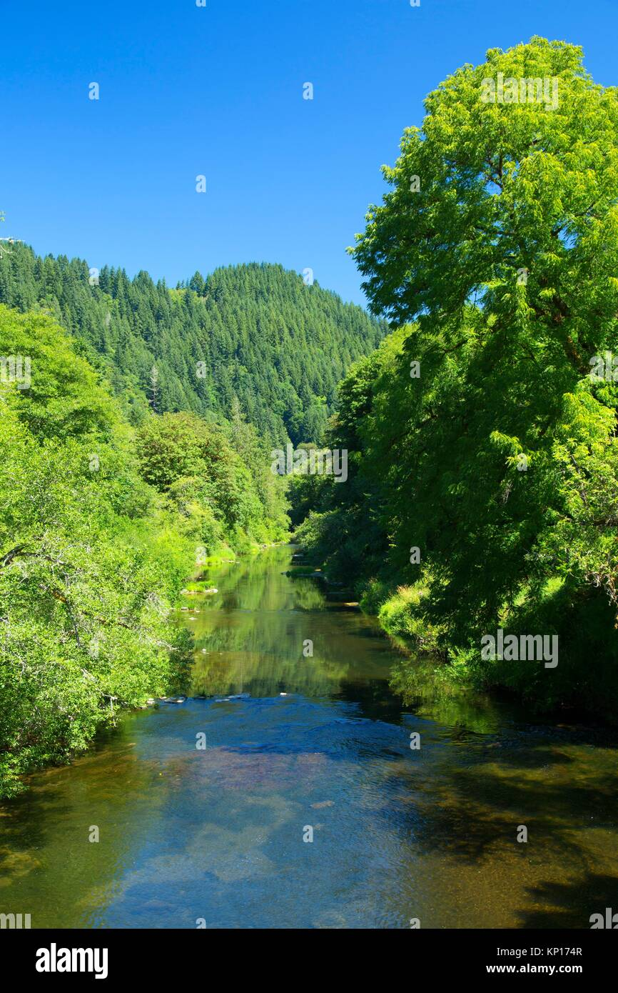 Alsea River, cinque fiumi barca Rampa, Lincoln County, Oregon. Foto Stock