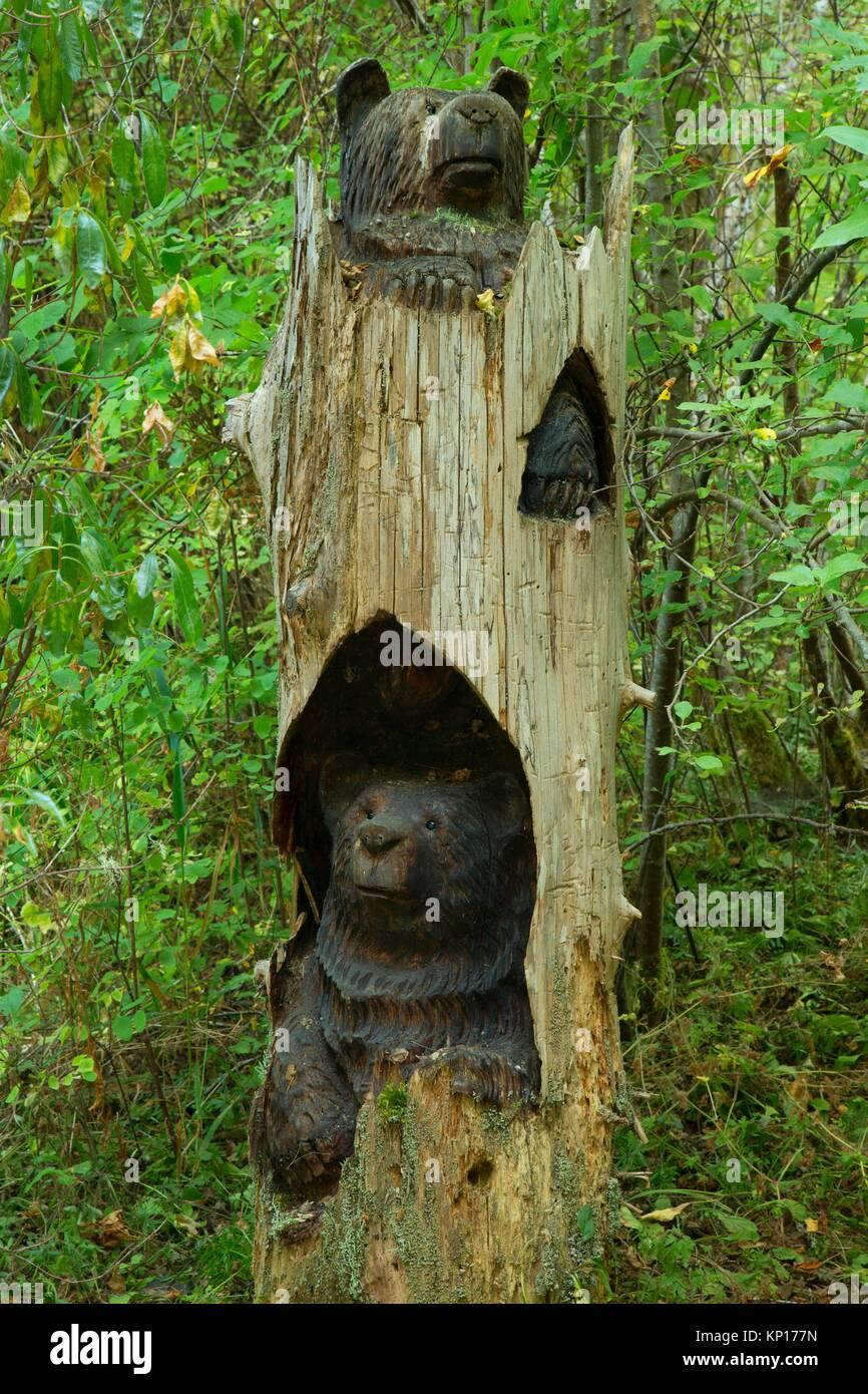 Bear chainsaw carving, Belfair-Theler Wetland Park, Washington. Immagini Stock