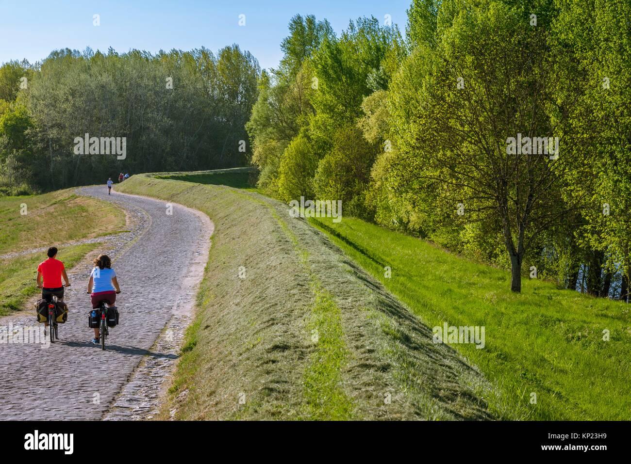 I ciclisti facendo la Loire un velo di Villandry, Indre-et-Loire Department, Center-Val de regione della Loira, Immagini Stock