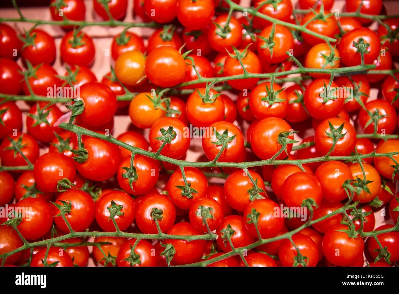 Pomodori. Immagini Stock