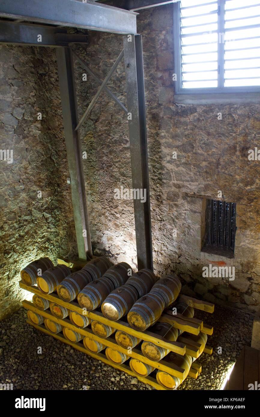 Vista della sommità delle cantine dei barili riempire con rum nell'Abitazione Clemente.i barili sono allineate Immagini Stock