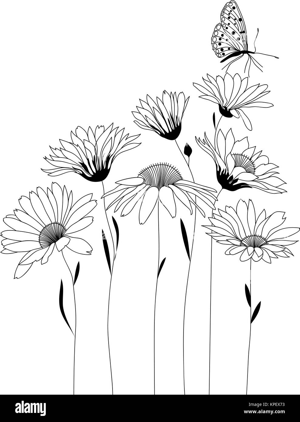 Fiori Stilizzati.Design Floreale Bouquet Di Fiori Stilizzati Illustrazione